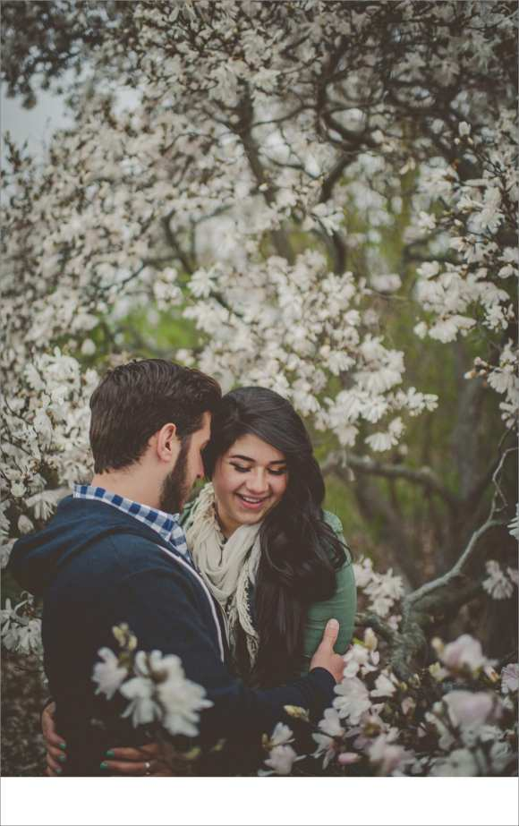 madison cherry blossoms, Madison area engagement sessions