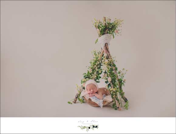 Sun Prairie WI Newborn session and workshop, sticks, twigs, olives, leaves, bundles, cherubs, angelic, newborn, babies, bonnets, hair flowers, swaddled, baskets, sleeping peaceful babies. Twig and Olive