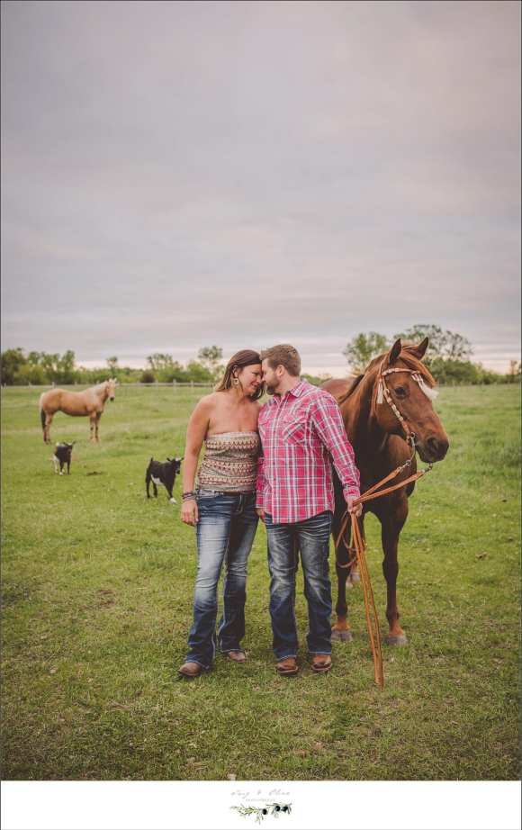 down on the farm, Eagle engagement sessions, love, happy couples, outdoor sessions, TOP, horses, barnyard animals, Sun Prairie area photography sessions in Eagle WI
