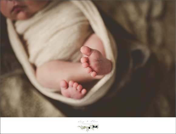 swaddled, details, wraps, blankets, baskets, little feet, Twig and Olive Photography newborns