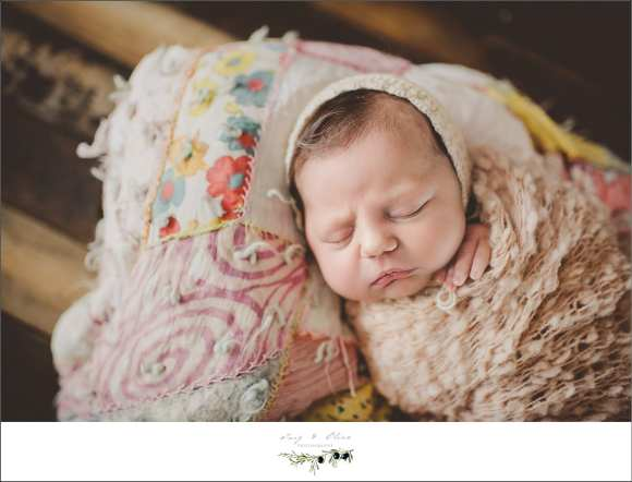 hair flowers, buckets, blankets, swaddled, cherubs, miracles, life, love, happy babies, Twig and Olive photography newborns