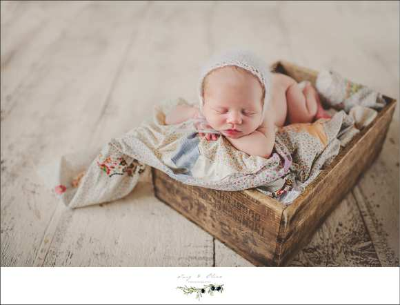 baskets, blankets, bonnets, booties, babies, wraps, swaddled, sleeping, resting, happy babies, Twig and Olive Newborns