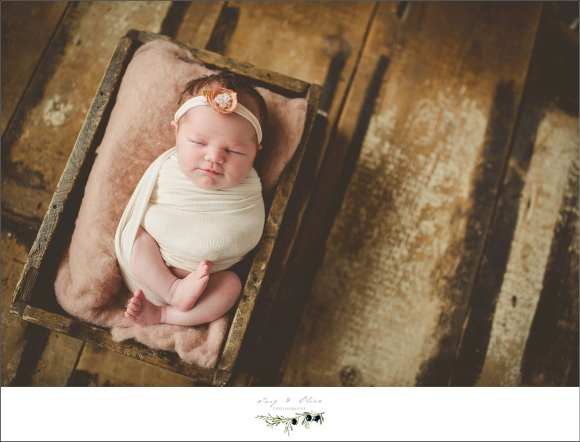 newborns, babies, hair flowers, swaddled, smiles, baskets, buckets, blankets, booties, black and white photography, precious, sweet, elegant, details, Twig and Olive photography, cute, sleeping babies, rustic, baby whisperer, TOP, Sun Prairie area newborn photographers, Dane County area, Madison Metro, Wisconsin Newborns,