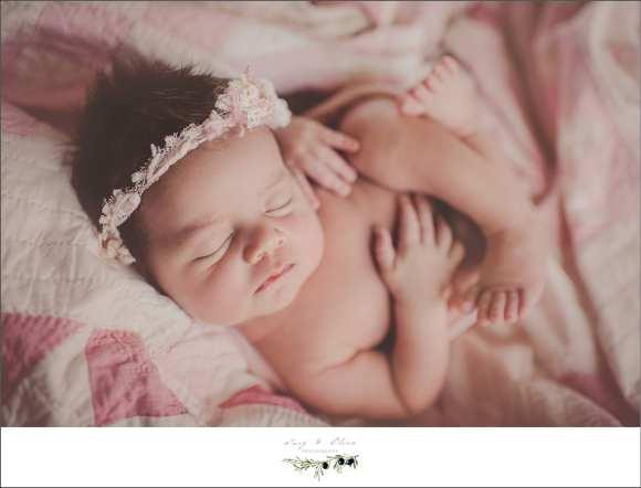 newborn, Sun Prairie area newborns, children and families, newborn sessions, hair flower, pink, blankets, bundles, baskets, babies, dark hair, Twig and Olive newborns