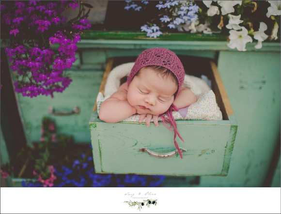 outdoor, purple hat, flower pot, drawer, swaddled, angelic, good baby, TOP