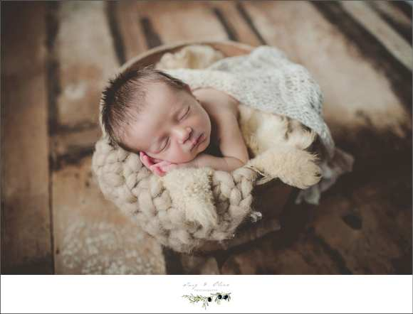 babies, blankets, bundles, angels, newborn sessions