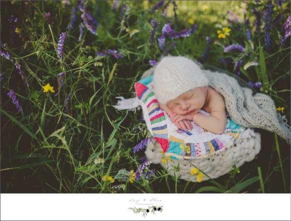 outdoor newborns, bonnets, blankets, swaddled, baskets, babies