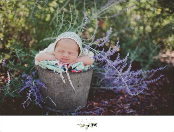 bonnets, flowers, baskets, blankets, little cherub