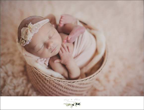 hair flower, swaddled, baskets, babies