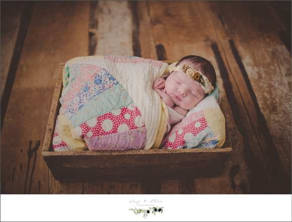 newborns, baskets, blankets