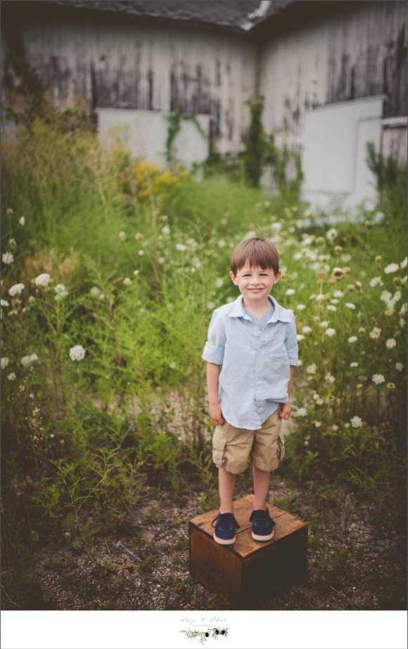 wild flowers, little boy