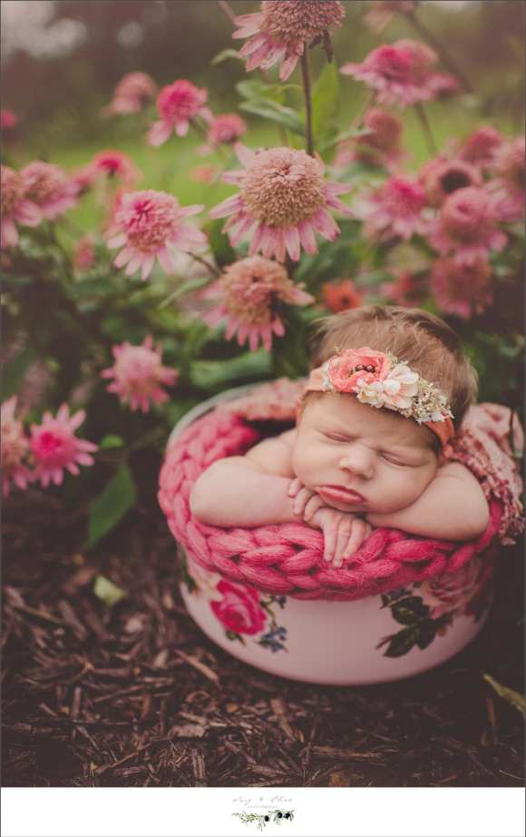 pink blanket and flowers
