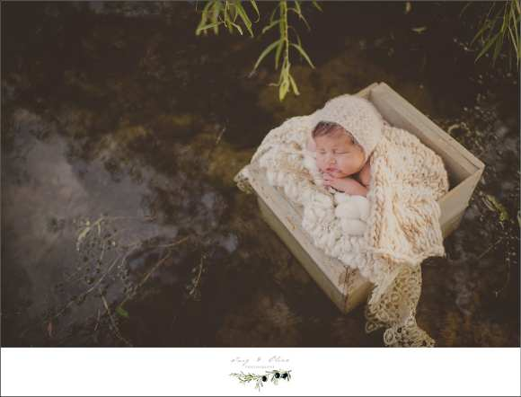 iconic sleeping baby in a basket floating on water