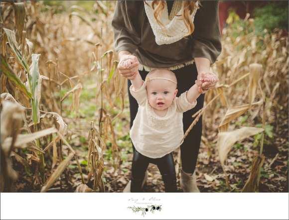 corn walk