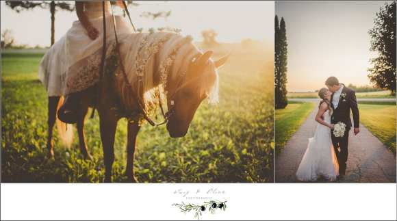 bride with horse wedding picture