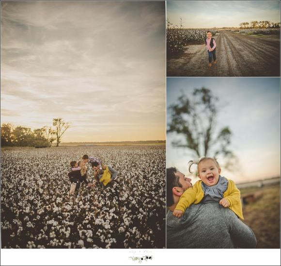 mississippi cotton field photography session