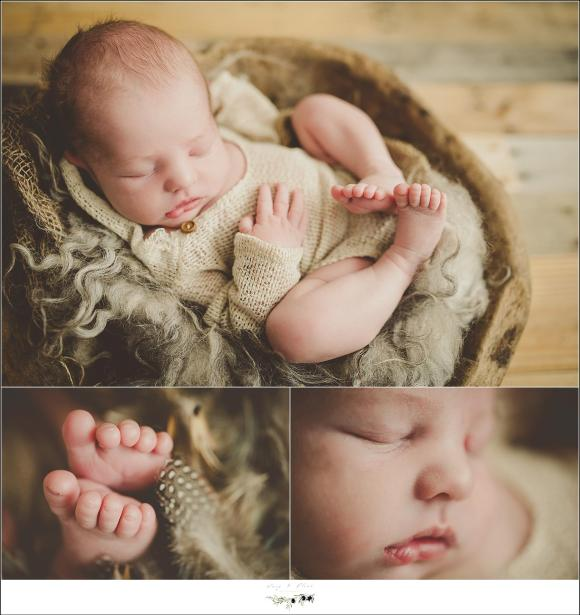 texas newborn photography workshops