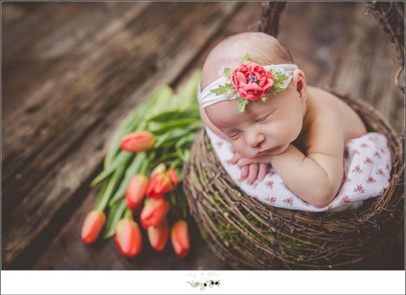 orange accent flowers