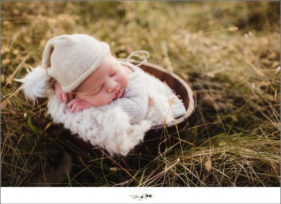 newborn photographer in WI