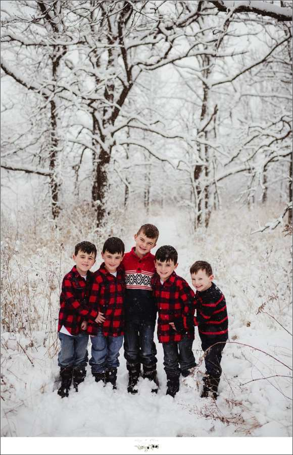 Five boys family photography Madison Wisconsin