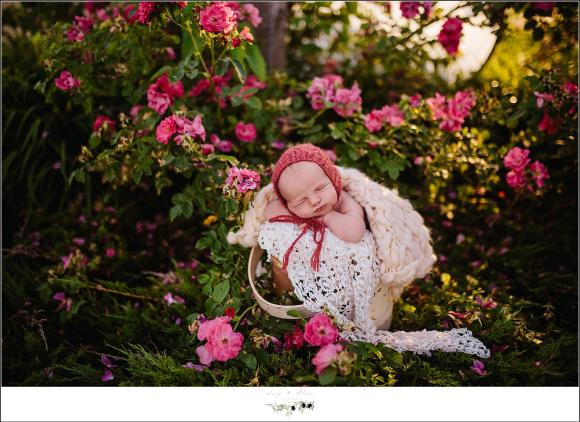 Pink flowers outdoor newborn session