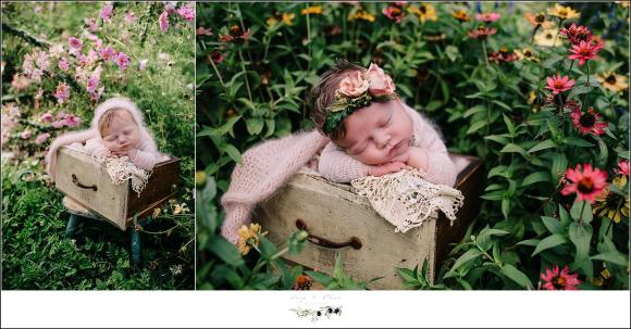 Baby in a drawer with flowers