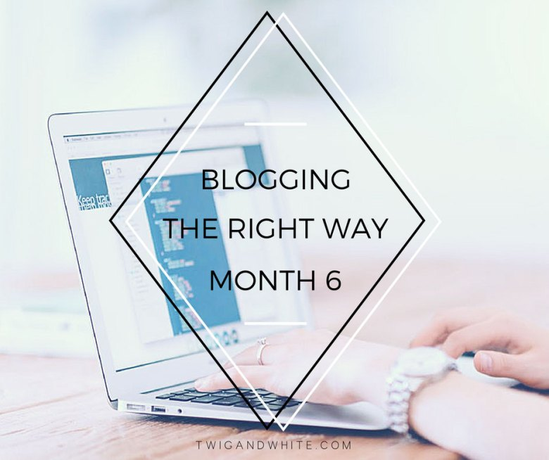 blogging the right way 6 months in