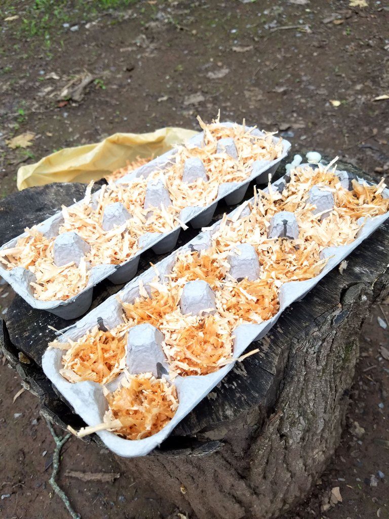 free home made fire starters for camping