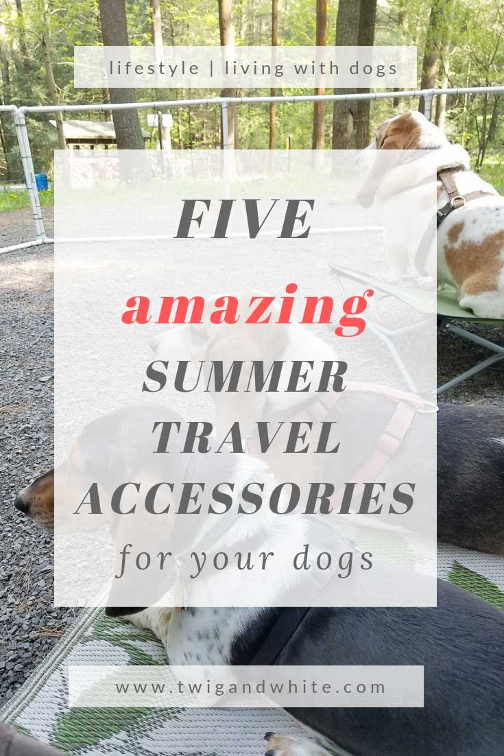 five amazing summer travel accessories for your dogs