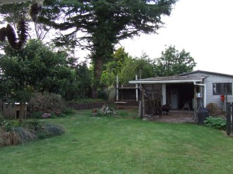 The look of the backyard is improving with the pruning of the cedar tree and the clearing of the second chicken pen area.