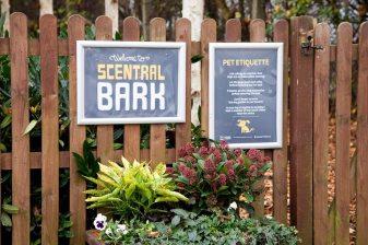 Scentral Bark