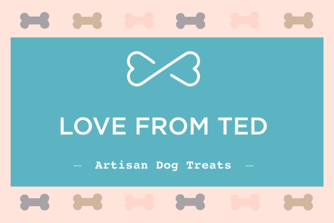 Click to discover why we think Love From Ted could be one of the best dog brands 2018
