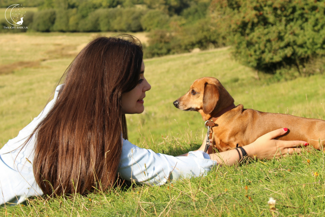 Sarah Baxter and Dachshund Ted from dog blog Twilight Bark UK