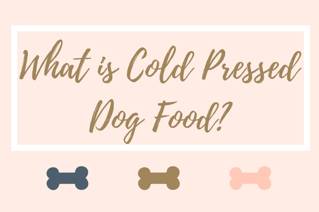 Click to discover more about cold pressed dog food (& whether it could be good for your dog)