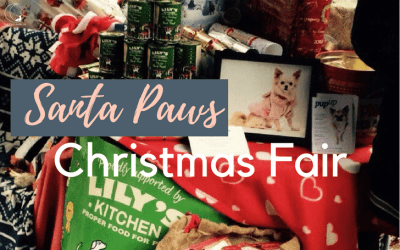All Dogs Matter – Santa Paws Christmas Fair!