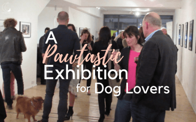 Dog Friendly Dog Photography Exhibition in London!