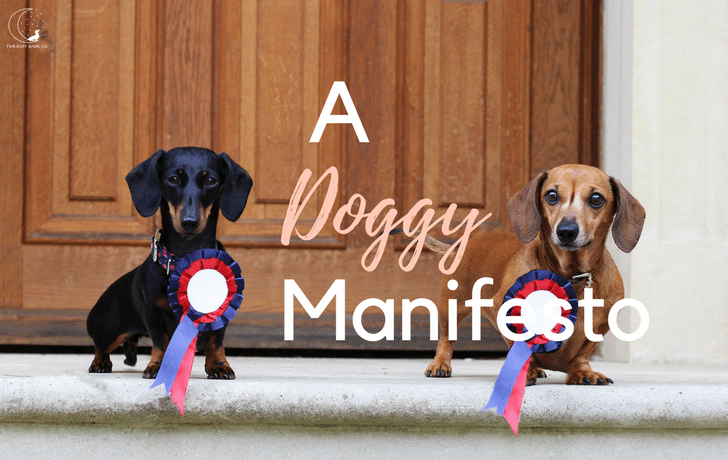 A General Election Manifesto for Dogs!