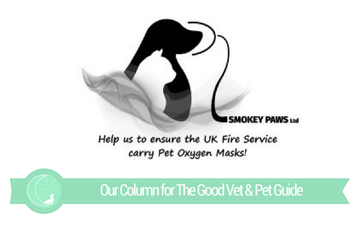 The Good Vet & Pet Guide (Interview with Smokey Paws)