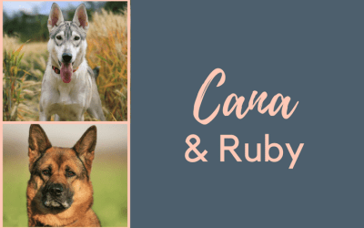 #SundayDogStories – Cana & Ruby