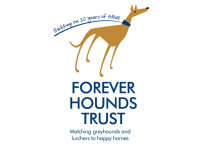 Forever Hounds