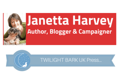 Q&A by Janetta Harvey – 6 Interesting Things About Us