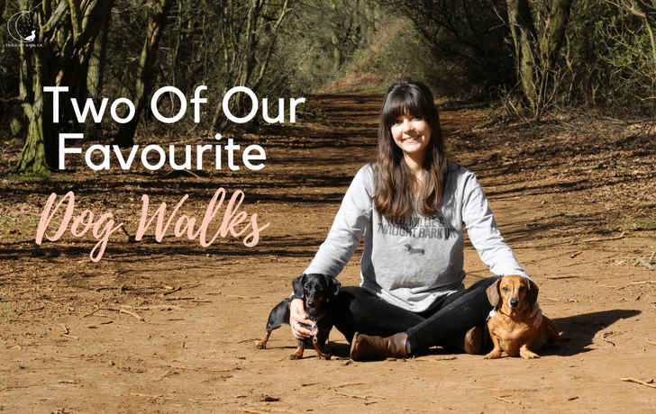 Advertorial: Two of our favourite dog walks!