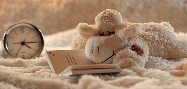 toy sheep falling asleep reading