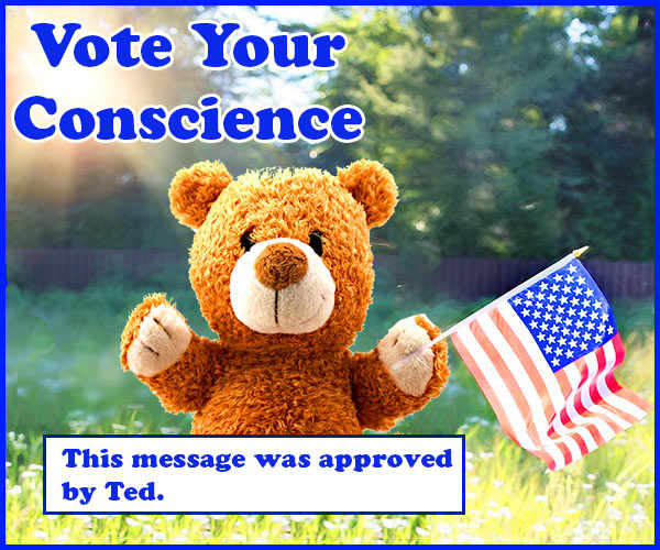 vote with your conscience