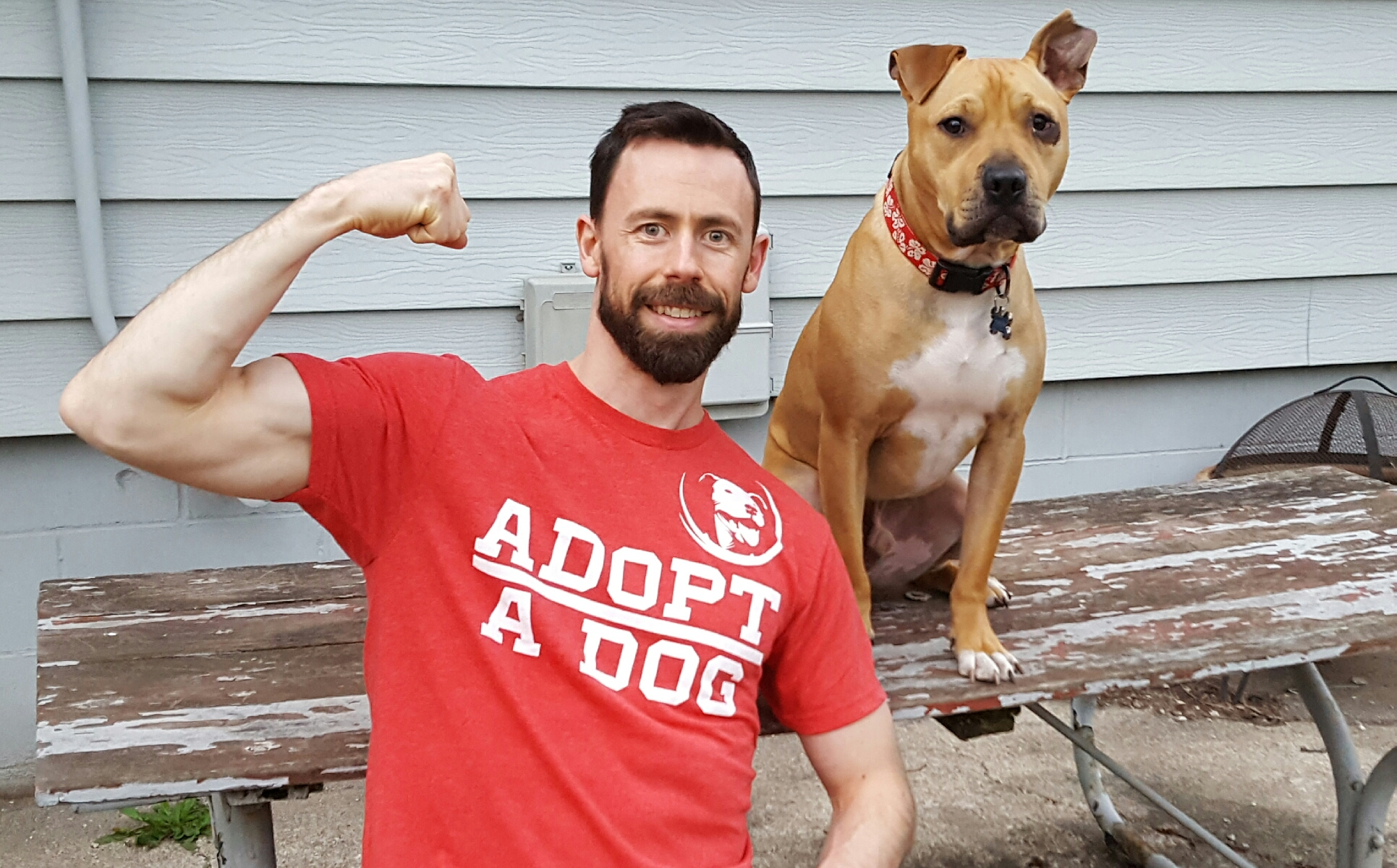 From Frisbee Dog Champ To 'American Ninja Warrior,' All To