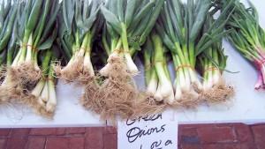 Green Onions at St Paul Farmers Market