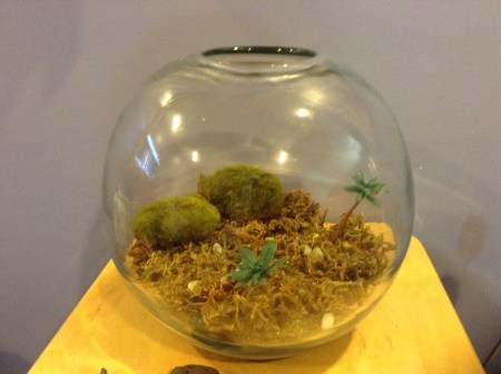 Moss from the dollar store and moss balls from Jo-Ann's. Plastic palm trees repurposed from another project.
