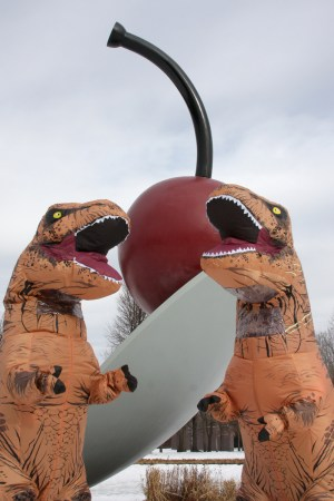 Trex Tuesdays looking ferocious in front of the Spoonbridge and Cherry