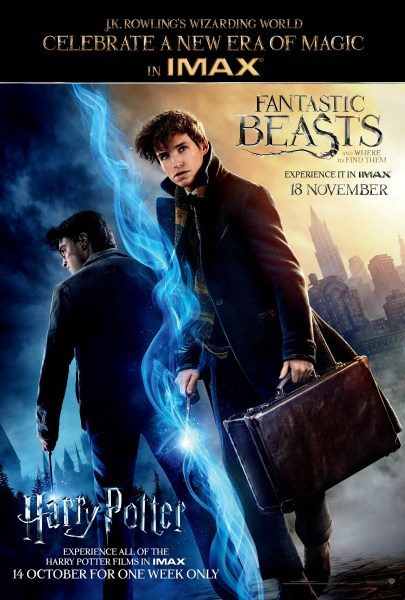 Poster featuring Harry Potter on one side and Newt Scamander on the other