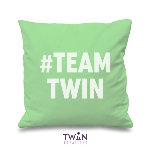 #TEAMTWIN bold cushion cover mint